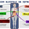 какие болезни вызывает алкоголизм